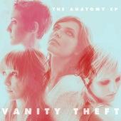 The Anatomy EP by Vanity Theft