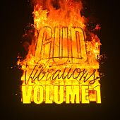 Gud Vibrations: Volume 1 by Gud Vibrations