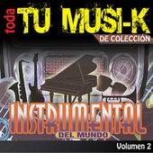 Tu Musi-k Instrumental, Vol. 2 de Various Artists