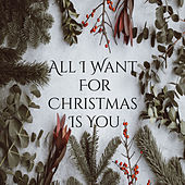 All I Want For Christmas Is You de The Progressions