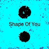 Shape of You de The Eternal Dreamers