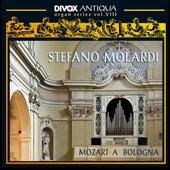 Mozart a Bologna by Stefano Molardi