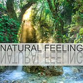 Natural Feeling by Nature Sounds (1)