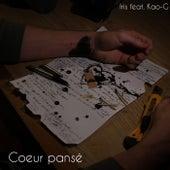 Coeur pansé by Iris