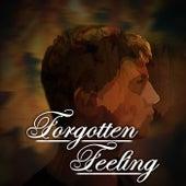 Forgotten Feeling de The Daniel Daniels Band