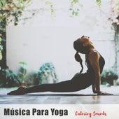 Música Para Yoga - Calming Sounds de Various Artists