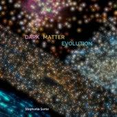 Dark Matter Evolution de Stephanie Sante