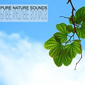 Pure Nature Sounds by Nature Sounds (1)