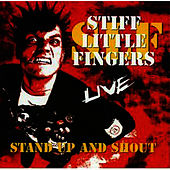 Stand Up and Shout de Stiff Little Fingers