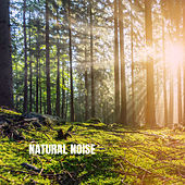 Natural Noise by White Noise Babies