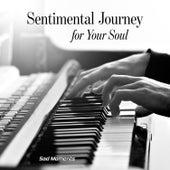 Sentimental Journey for Your Soul: Sad Moments von Various Artists