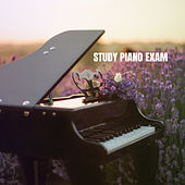 Study Piano Exam van Instrumental