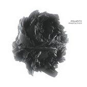 Polarity (DJ Mix) von Focal