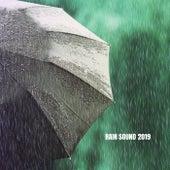 Rain Sound 2019 de Ocean Waves For Sleep (1)