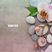 Asian Spa de Musica Relajante