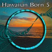 Hawaiian Born 5 by Various Artists