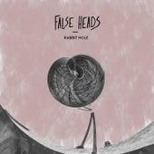 Rabbit Hole de False Heads