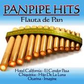 Panpipe Hits. Flauta de Pan de Marco Vinicio