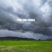 Pure Rain Sounds by Relaxing Rain Sounds