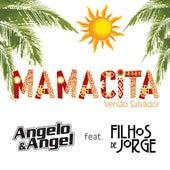Mamacita (Versão Axé) de Angelo & Angel