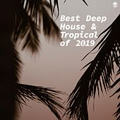 Best Deep House & Tropical of 2019 by Various Artists