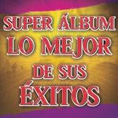Super Álbum Lo Mejor De Sus Éxitos de Various Artists