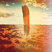 Spirit Bird de Xavier Rudd