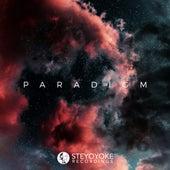 Steyoyoke Paradigm, Vol. 05 by Various Artists