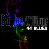 44 Blues by Big Joe Williams