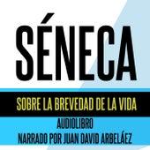 Séneca: Sobre la Brevedad de la Vida (Audiolibro) de Juan David Arbeláez