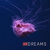 Dreams by IAM