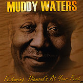 Muddy Waters by Muddy Waters