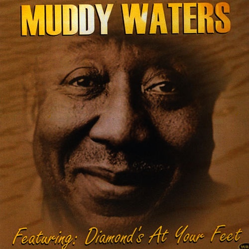 Muddy Waters by Muddy Waters