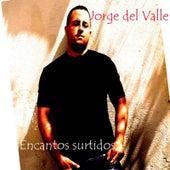 Encantos surtidos (Recopilación 1999-2010) de Various Artists
