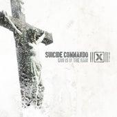 God Is In The Rain de Suicide Commando