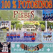 100% Potosinos de German Garcia