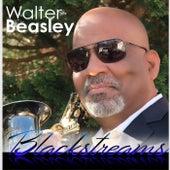 Blackstreams by Walter Beasley
