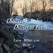 Different Styles Different Feels by Larry White