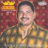Xote e Forró Volume 10 von Zezo