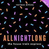 All Night Long (The House Train Express), Vol. 3 von Various Artists