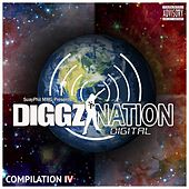 The Diggz Nation Compilation, Vol. 4 by Various Artists