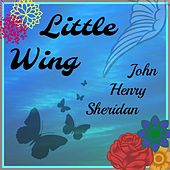 Little Wing by John Henry Sheridan