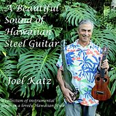 A Beautiful Sound of Hawaiian Steel Guitar von Joel Katz