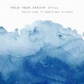 Hold Your Breath Still by Gavin Luke