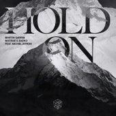 Hold On (feat. Michel Zitron) de Martin Garrix
