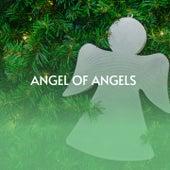 Angel of Angels de Howard Lemon Singers, Jackson, Chuck, Chuck Jackson, Cleophus Mabone, The Dixie Wonders, Marion Williams, The Lovers Of God, Mildred Clark