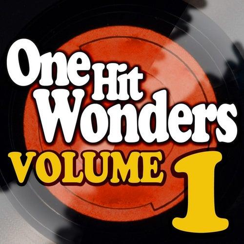 One Hit Wonders - Vol. 1 by Various Artists