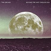 Beyond the Vast, Endless Sea by The Orchid