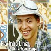 Flavinho Lima Canta Luiz Gonzaga von Flavinho Lima