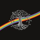 Rainbow de Gabriel Gaia